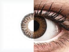 TopVue Color daily - Brown - uden styrke (10linser)