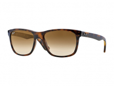 Ray-Ban solbriller RB4181 - 710/51