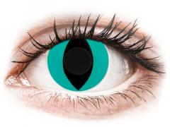 CRAZY LENS - Cat Eye Aqua - endagslinser uden styrke (2 linser)