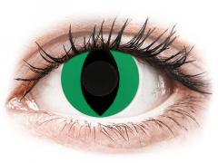 CRAZY LENS - Cat Eye Green - endagslinser uden styrke (2 linser)