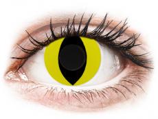 CRAZY LENS - Cat Eye Yellow - endagslinser uden styrke (2 linser)