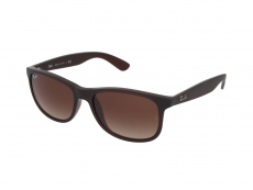 Solbriller Ray-Ban RB4202 - 607313